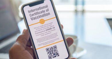 Un immagine in anteprima del passaporto